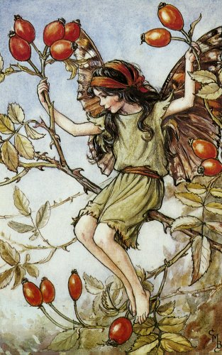 Poem and Picture by Cicely Mary Barker