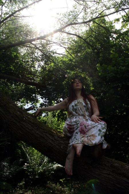 On_the_Tree
